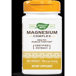 МАГНЕЗИЕВ  КОМПЛЕКС 250 mg х 100