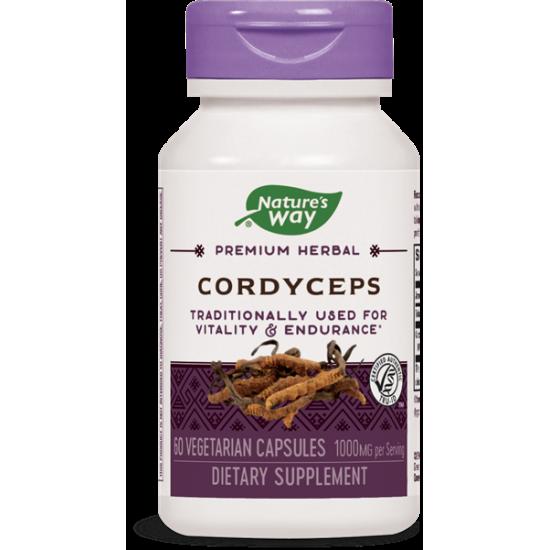Кордицепс 500 mg х 60 капсули